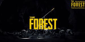 The forest december frissites